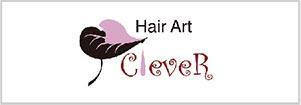Hair Art Clever